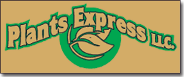 Plants Express LLC